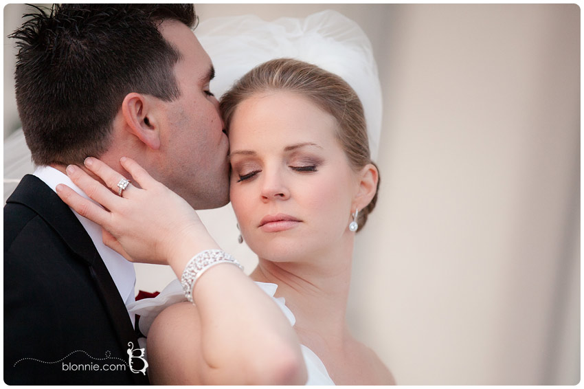Wedding at The Palace in Somerset, New Jersey