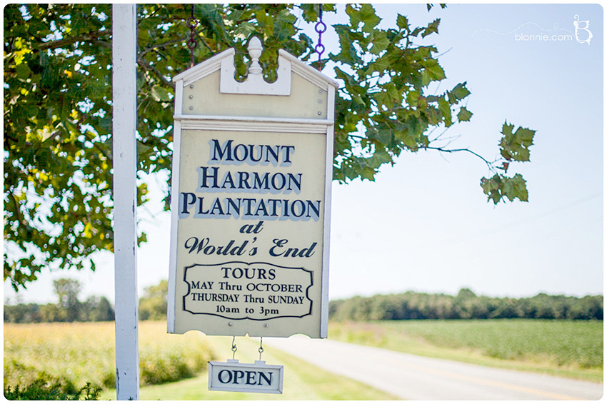 Mount Harmon Plantation Wedding