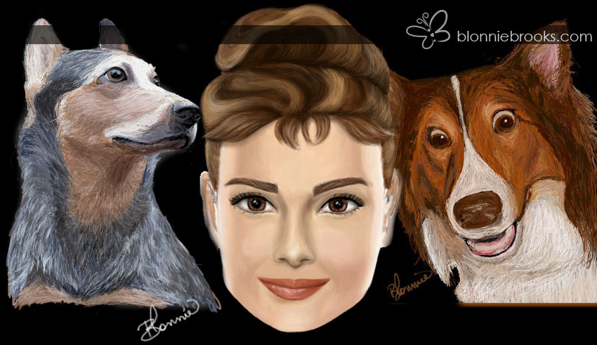 Scully - Australian Cattle Dog, Audrey Hepburn, Izzy - Shetland Sheepdog