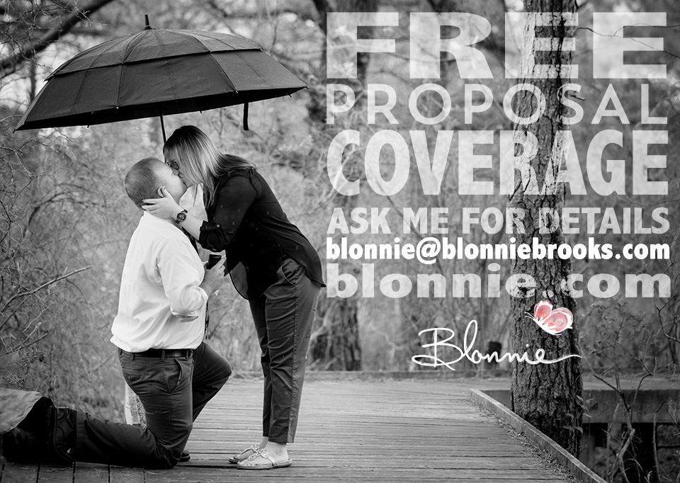 Proposal or Engagement Photographer